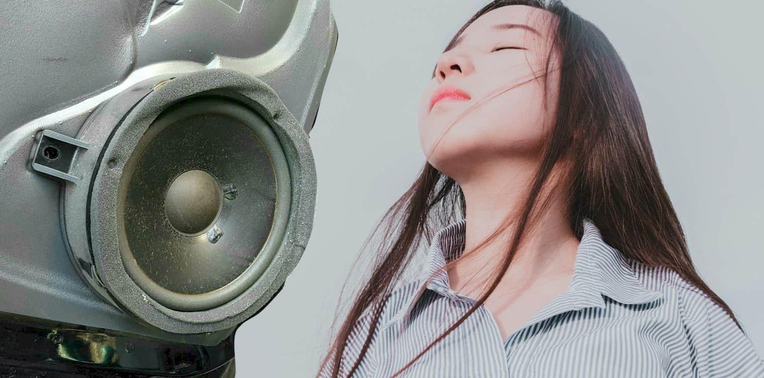 Car Speakers Crackling